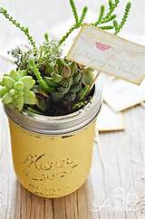 diy mini gardens great gift idea