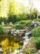 Water Garden Landscaping Ideas | Postris