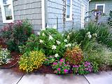 front yard idea on Pinterest | Front Yard Landscaping, Landscape ...