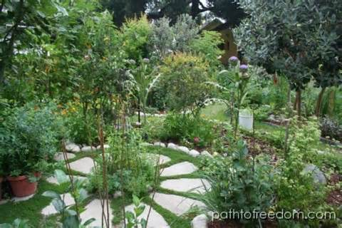 FRONT YARD GARDENS | Little Homestead in the City - A Path to Freedom ...