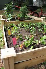 Spring Garden Project: Raised Garden Bed