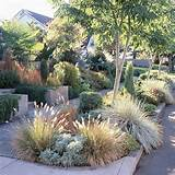 ... Drought-Tolerant Landscaping Ideas | Chico, CA Real Estate & Homes