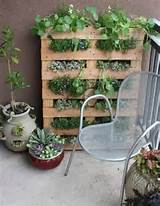 Unique Urban Gardening Ideas to Brighten Up Your Outdoor Space ...