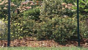 garden with wire fencing