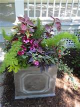 Container garden for shade. | Gardening | Pinterest