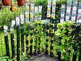 vertical gardening ideas home designs