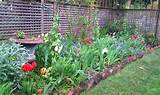 spring is here garden ideas pinterest