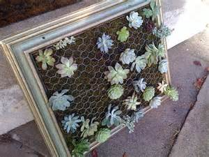 luna see diy tutorial framed vertical succulent garden