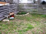 this shows the corner of the yard before