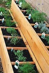 Herb garden box idea | Gardening | Pinterest