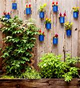 Backyard Tin Can Fence Garden | Ciera Design Studio