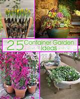 25 Container Garden Ideas