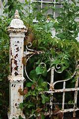 rustic old wrought iron garden gate rustic everything pinterest
