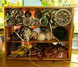 and here s the finished bug hotel five star don t you think we