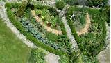 vegetable garden idea gardens pinterest
