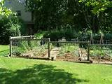 Garden Fence Ideas Pictures - Garden Edging Ideas
