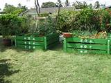 ... Of Garden Pallet Beds For Growing Multiple Plants | Pallets Designs