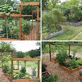 ideas gardens fence square foot gardening raised beds squares foot