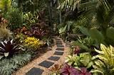 , Garden Stepping Stones, Gardens Tropical, Tropical Plants, Tropical ...