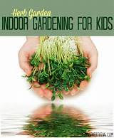 indoor gardening for kids herb garden a mother thing