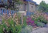 English Cottage Gardens Photos English Cottage Garden Ideas