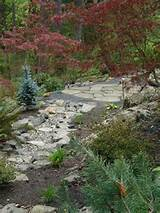 rock landscaping ideas that are quick easy ofigyjuwun