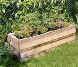diy-pallet-garden-containers-diy-pallet-garden-ideas-pallet-garden ...