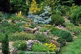 garden: Gardens Ideas, Photography Gardens, Rocks Gardens, Connecticut ...