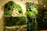 25 More Cool Vertical Garden Inspirations | DigsDigs