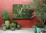 Crea il tuo giardino verticale con i pannelli di Flora Grubb