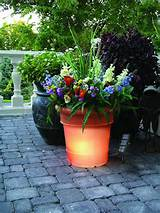 october 4 2010 unique gift ideas for the backyard gardener to fit