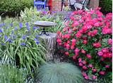 Overflowing flower beds | garden ideas | Pinterest