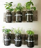 ... ideas green design ideas outdoor living plants and flowers tags