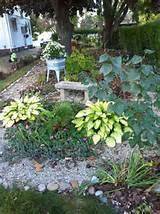 garden bench flowers and garden ideas pinterest
