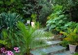 Exotic Tropical Patio ~ Agit Garden Collections