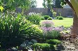 garden in washington state garden party pinterest