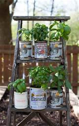 planters and an upcycled wooden ladder garden display simple bites