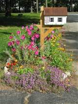 Mailbox garden | useful | Pinterest