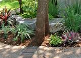 Texas Hill Country Xeriscaping | Texas Xeriscape