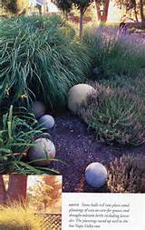 To Planet Nielsen » Blog Archive » Sunset Western Garden Ideas ...