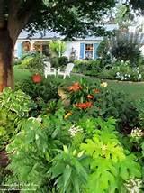 front yard shade garden garden pinterest