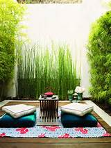 ... garden designed by Rob Pressman, the vertical horsetail stalks provide