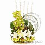 Cymbidium Garden - Malpara Florist and Design Studio Townsville