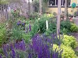 designing gardens ideas small gardens design