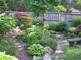 Mini Japanese Style Garden, Small space garden with multiple types of ...