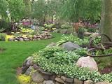 gardens shade garden hostas perennials rock garden wisconsin