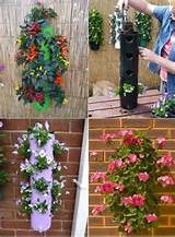 Vertical garden with old PVC pipes | Projek untuk Dicuba | Pinterest