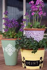 ... post coming, with ideas about fitting more plants into a small garden