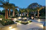tropical landscape design lit up at night with LED lighting.