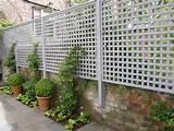 Vegetable Garden Trellis Ideas | CDxND.com - Home Design in Pictures